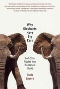 Why Elephants Have Big Ears