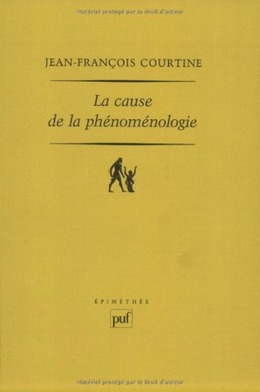 La cause de la phénoménologie