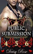 Public Submission 4 - 6