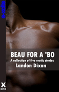 Beau For A Bo: A collection of gay erotic stories