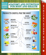 Anatomy And Nutrition For Body And Health (Speedy Study Guides)