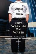 Not Walking On Water: The Most Improbable Spiritual Enlightening of a Computer Geek; A Novel