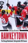 Hawkeytown: The Chicago Blackhawks' Unforgettable 2013 Season