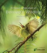 A Visual Celebration of Borneo's Wildlife