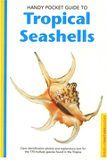 Handy Pocket Guide to Tropical Seashells