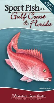 Sport Fish of the Gulf Coast & Florida