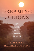 Dreaming of Lions