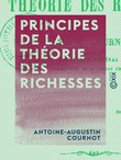 Principes de la théorie des richesses
