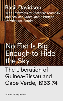 No Fist Is Big Enough to Hide the Sky