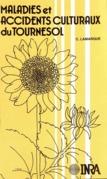 Eléments de reconnaissance des maladies et accidents culturaux du tournesol rencontrés en France