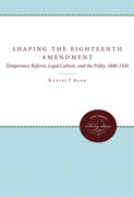 Shaping the Eighteenth Amendment