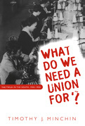 What Do We Need a Union For?