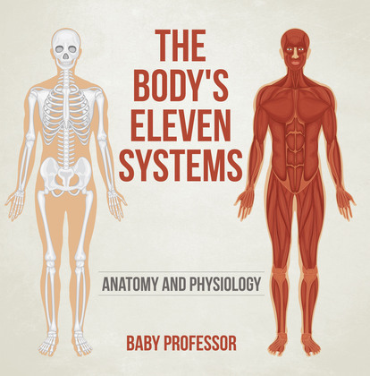 The Body's Eleven Systems | Anatomy and Physiology