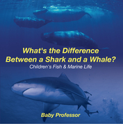 What's the Difference Between a Shark and a Whale? | Children's Fish & Marine Life