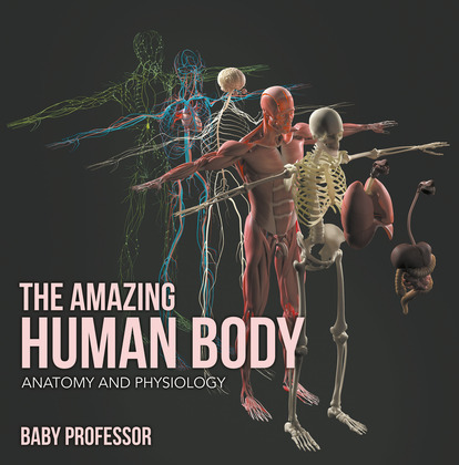 The Amazing Human Body | Anatomy and Physiology