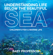 Understanding Life Below the Beautiful Sea | Children's Fish & Marine Life