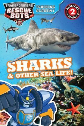 Transformers Rescue Bots: Training Academy: Sharks & Other Sea Life!