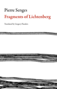 Fragments of Lichtenberg