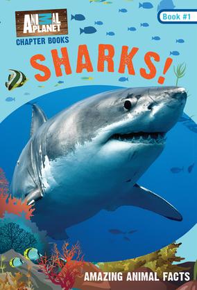 Sharks! (Animal Planet Chapter Books #1)