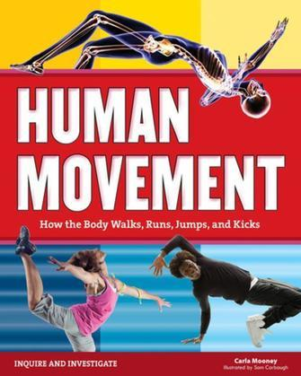 Human Movement: How the Body Walks, Runs, Jumps, and Kicks