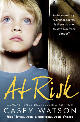 At Risk: An innocent boy. A sinister secret. Is there no one to save him from danger?