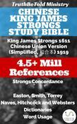 Chinese King James Strongs Study Bible