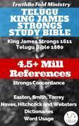 Telugu King James Strongs Study Bible