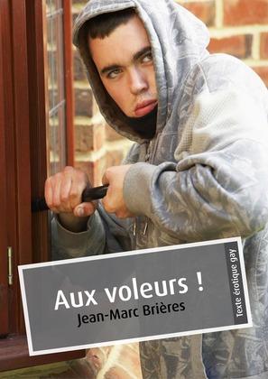 Aux voleurs ! (érotique gay)