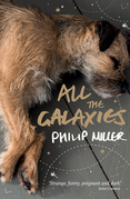 All the Galaxies