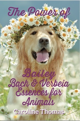 The Power of Bailey, Bach and Verbeia Essences for Animals