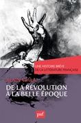 De la Révolution à la Belle Époque. Une histoire brève de la littérature française