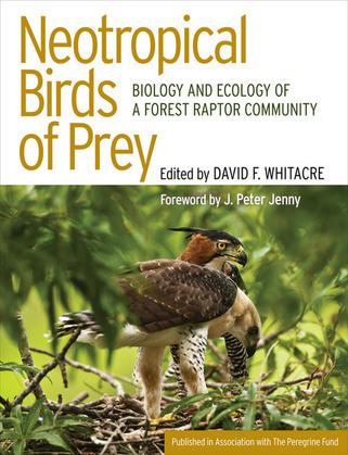 Neotropical Birds of Prey