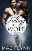 Falling For A Wolf #2: BBW Werewolf Shifter Romance