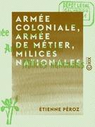 Armée coloniale, armée de métier, milices nationales