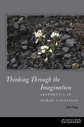 Thinking Through the Imagination: Aesthetics in Human Cognition