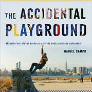The Accidental Playground