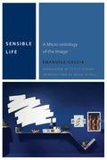 Sensible Life: A Micro-ontology of the Image