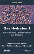 Gas Hydrates 1