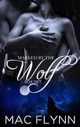 Marked By the Wolf Box Set: Werewolf Shifter Romance