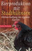 Eierproduktion Mit Stadthühnern