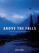 Above the Falls
