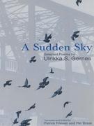 A Sudden Sky
