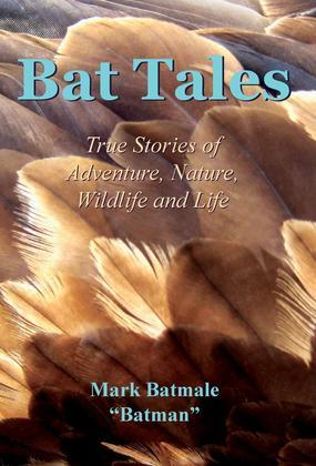 Bat Tales: True Stories of Adventure, Nature, Wildlife and Life