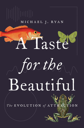 A Taste for the Beautiful