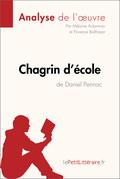 Chagrin d'école de Daniel Pennac (Analyse de l'oeuvre)