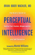 Perceptual Intelligence