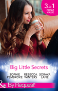 Big Little Secrets: Heiress on the Run / The Ranger's Secret / The Billionaire in Disguise (Mills & Boon By Request)
