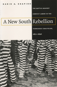 A New South Rebellion