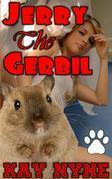 Jerry The Gerbil