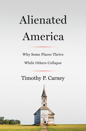 Alienated America
